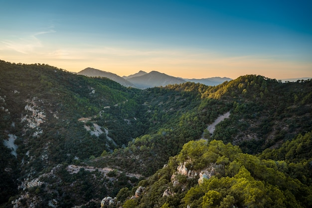 Paisagem montanhosa com pinheiros e sobreiros no parque natural sierra de espadan, na região de valência, espanha.