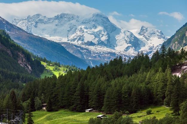 Paisagem montanhosa de alpes de verão com floresta de abetos em encosta e topos rochosos cobertos de neve em longe, na suíça.