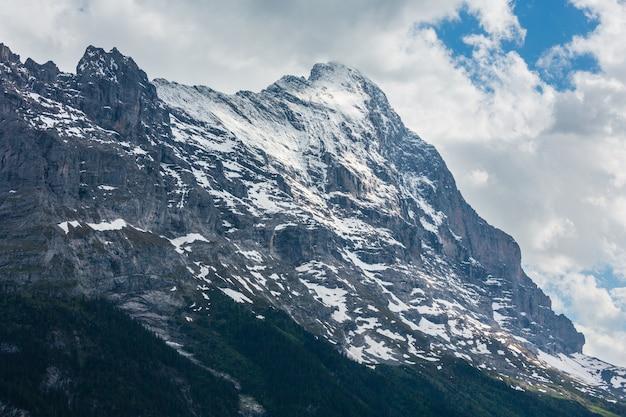 Paisagem montanhosa de alpes de verão com floresta de abetos em encosta e topos rochosos cobertos de neve, suíça.