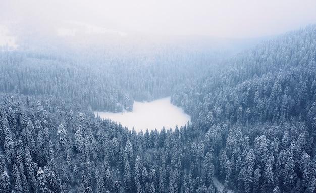 Paisagem montanhosa de inverno