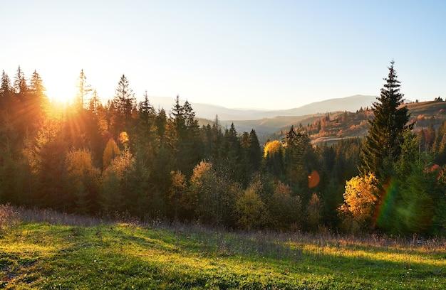 Paisagem montanhosa de outono com floresta colorida.