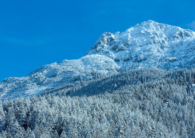 Paisagem montanhosa do inverno com floresta de pinheiros nevados na encosta (áustria, tirol).