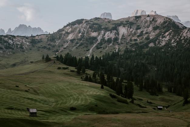 Paisagem mountain view