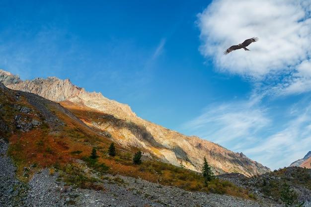 Paisagem multicolor de outono com montanha ensolarada com tonalidade laranja. espectacular vista colorida para o cume da montanha afiada no outono. cenário montanhoso heterogêneo em cores de outono.