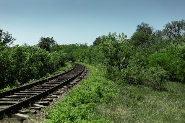 Paisagem natural da ferrovia na floresta