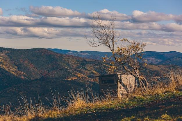 Paisagem natural da floresta de outono e montanhas