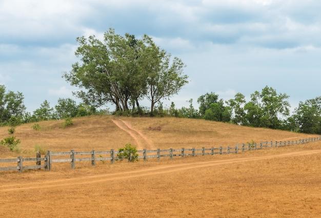 Paisagem natural de grass hill (phukhao ya) ou bald hill (khao hua lan) na província de ranong, sul da tailândia