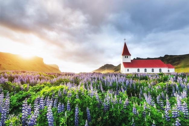 Paisagem natural do campo de lavanda e uma igreja