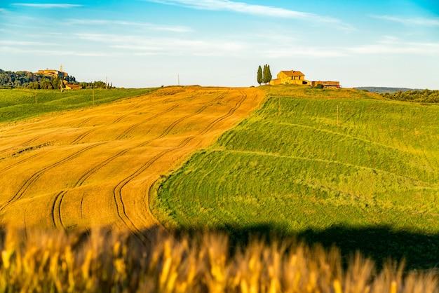 Paisagem natural do campo montanhoso de tuscan na temporada de verão com a casa italiana típica, o campo agrícola verde e as árvores de ciprestes em itália central.