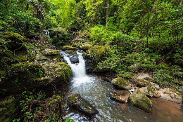 Paisagem natureza, de, sapan, cachoeira, em, sapan, vila, distrito boklua