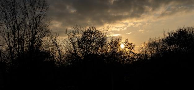 Paisagem, o sol brilha através das nuvens em uma árvores