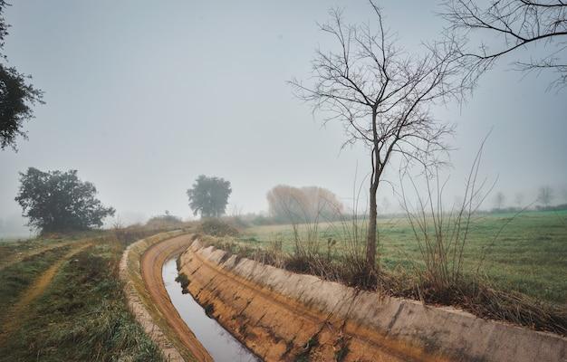 Paisagem outonal com canal de irrigação