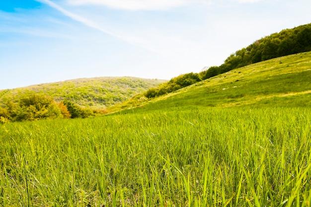 Paisagem pitoresca, nuvens de chuva, montanhas cobertas de plantas verdes, estrada rural passa entre colinas