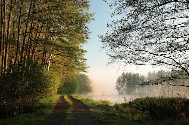 Paisagem rural à beira do lago durante o nascer do sol
