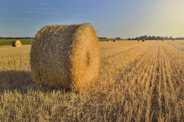 Paisagem rural cênica com um haybale em um campo ao pôr do sol