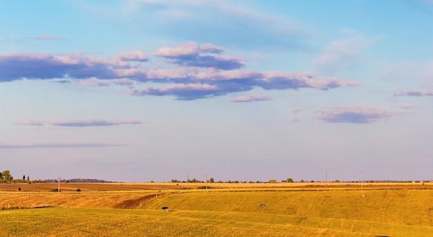 Paisagem rural com campo e céu pitoresco durante o pôr do sol