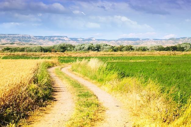 Paisagem rural com campos. aragão