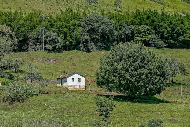 Paisagem rural com grama, árvores e pequena casa na colina. minas gerais, brasil