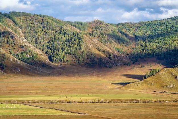 Paisagem rural de montanha no outono montanha altai da rússia