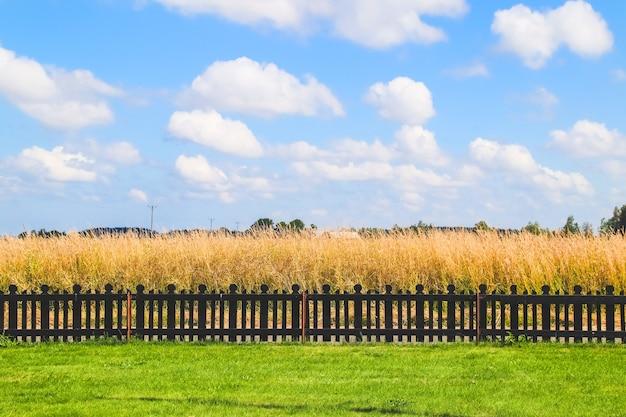 Paisagem rural de verão linda em um dia ensolarado com céu azul.