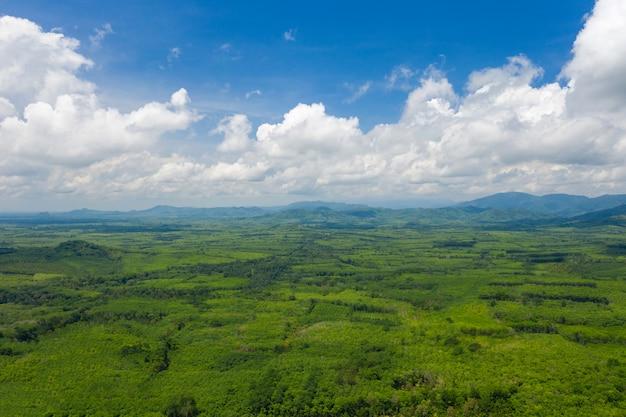 Paisagem rural na tailândia