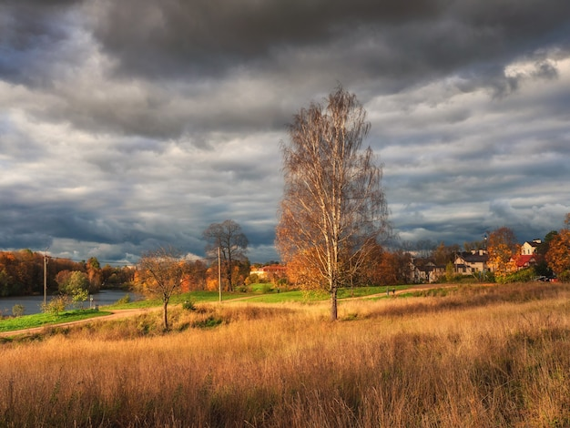 Paisagem rústica de outono brilhante com uma árvore alta na estrada. céu escuro sobre a vila antes da tempestade.