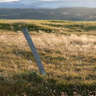 Paisagem, sol dappled arame cercado de gramados, colinas e montanhas