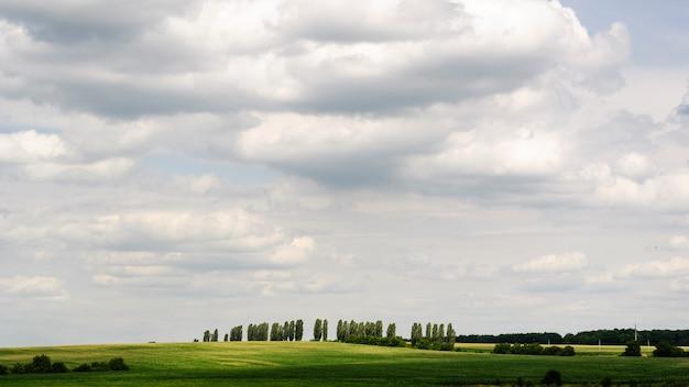 Paisagem suburbana bonita do campo do verão e céu nebuloso