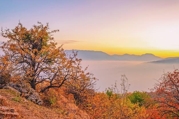 Paisagem surpreendentemente bela com árvores em uma área montanhosa com nuvens flutuantes sobre as montanhas