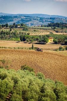 Paisagem típica do monte de tuscan com vinhedos, bosque verde-oliva e trabalho do trator.