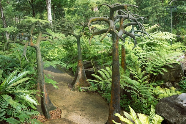 Paisagem tropical com árvores artificiais no famoso jardim botânico de cingapura