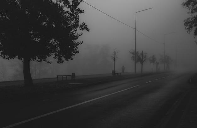 Paisagem urbana nevoenta