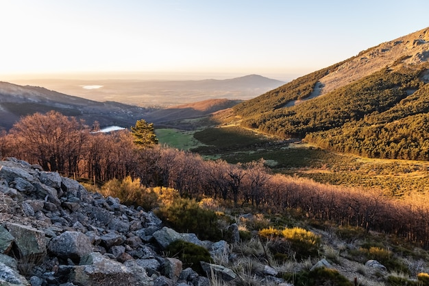 Paisagem verde ao nascer do sol sobre o vale, com árvores, rochas e vista distante das montanhas no horizonte. la morcuera, navacerrada, madrid. europa.