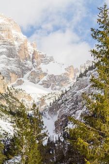 Paisagem vertical de montanhas cobertas de neve