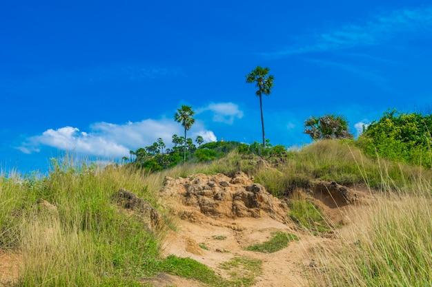 Paisagem vista da terra de grama. em phuket, tailândia. na viagem de verão