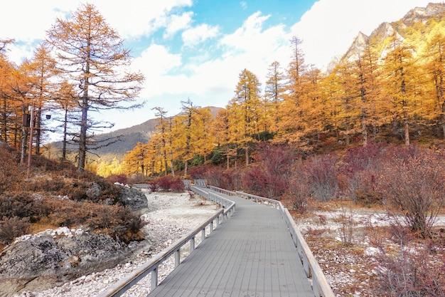 Paisagem vista no outono na reserva nacional de yading, condado de daocheng, província de sichuan, china.