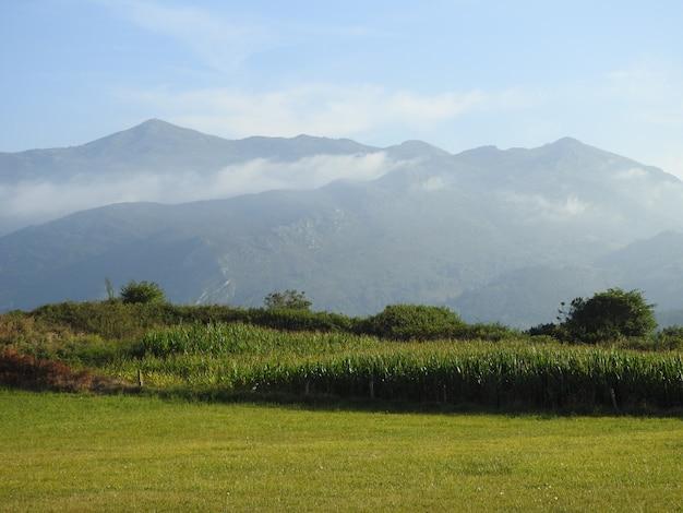 Paisaje de montaa con prados verdes e campos de maiz