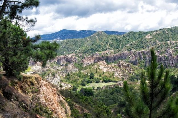 Paisaje de montana e valle de pinos
