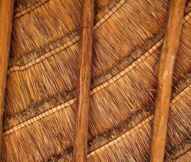 Palapa tropical méxico madeira telhado telhado detalhe