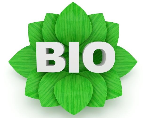 Palavra bio e folhas verdes sobre um fundo branco