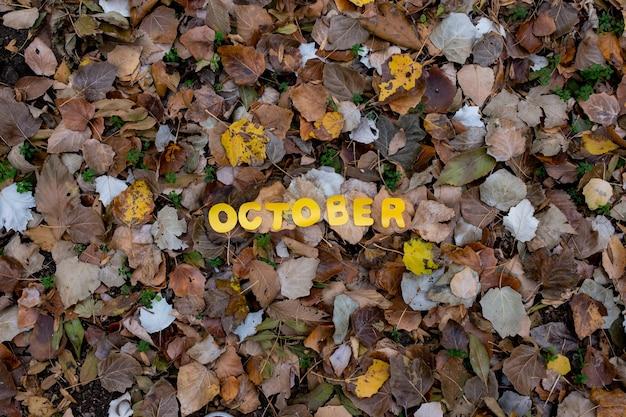Palavra de outubro de fundo de papel de outono