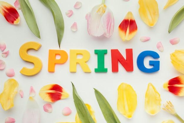 Palavra de primavera e pétalas de flores