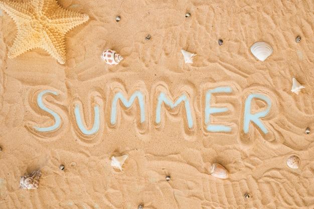 Palavra de verão e conchas na areia