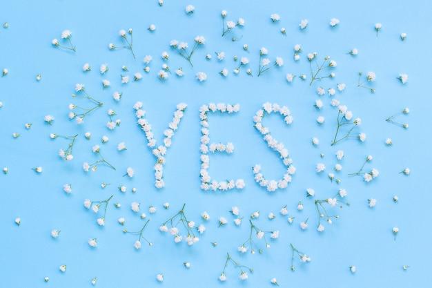 Palavra sim feita de flores brancas em uma vista superior de fundo azul claro