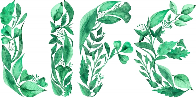 Palavra vida feita de folhas verdes isoladas. ilustração em aquarela.
