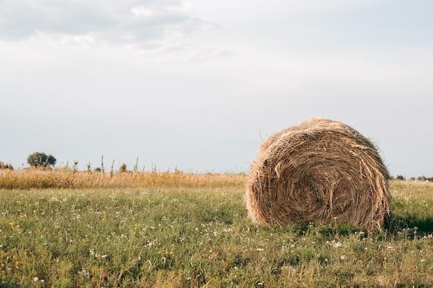 Palheiro em um campo no outono com tempo ensolarado