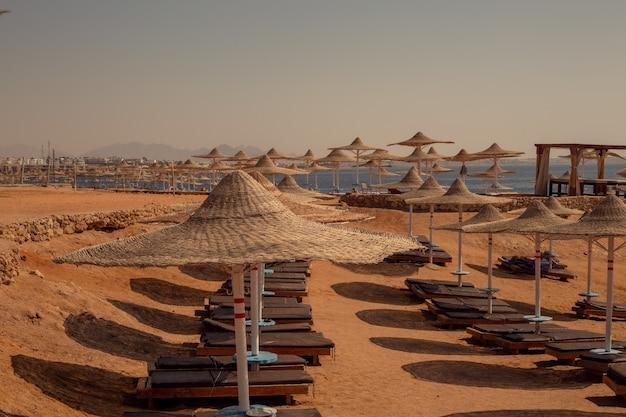 Palm alley na praia egípcia, farol e vista no mar vermelho. egito