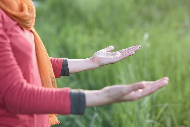 Palmas de uma mulher meditando na floresta
