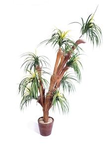 Palmeira artificial isolada no fundo branco