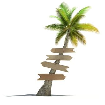 Palmeira com letreiros fixados ao tronco em superfície neutra